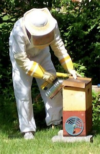 Bee keeping equipment - beekeeper costumes (4)