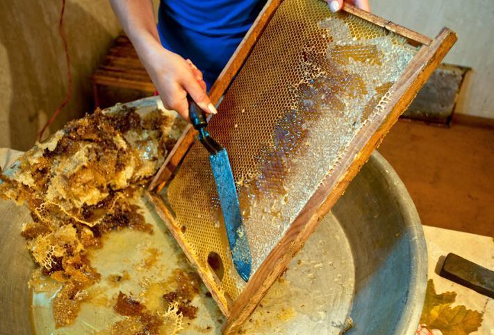 Honey bee supplies - make a honey extractor