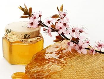 Antibacterial honey - honey antibiotic (2)