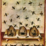 Bee hives pictures - bee skeps