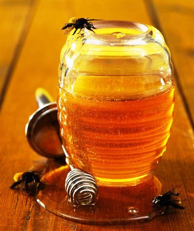 Unpasteurized honey - no flavoured honey (1)
