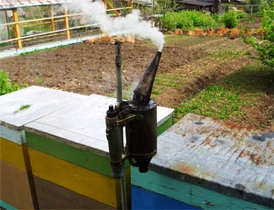 Bee smoker - honey equipment (2)