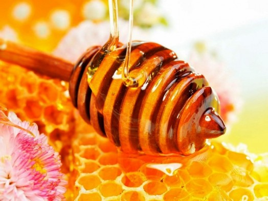 honey wound healing - healing properties of honey (2)