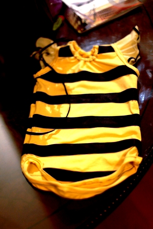 DIY bee costume - bee costume homemade (2)