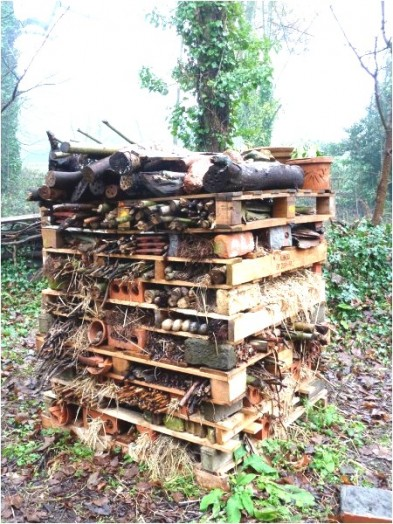 Bee house - bee hotels (1)