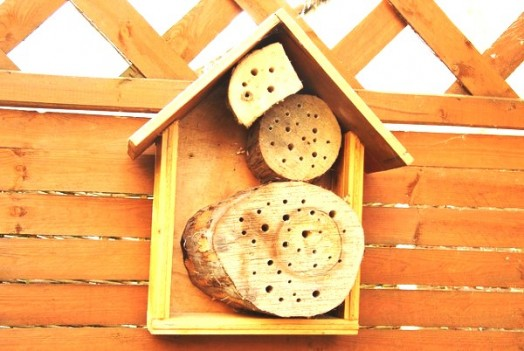 Bee house - bee hotels (19)