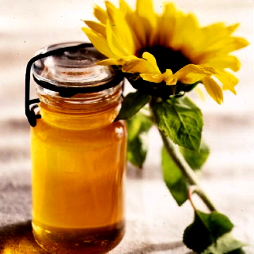 Sunflower honey (1)