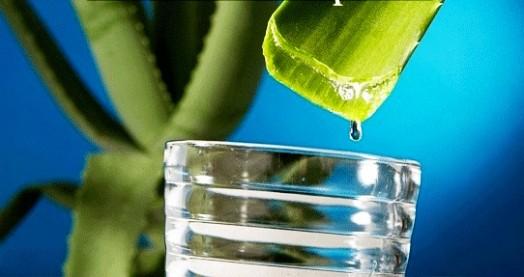 Aloe vera honey - aloe vera drink benefits (1)