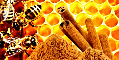 honey and cinnamon for weight loss hoax image search results