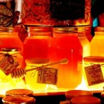 Honey bee facts - facts about honey (1)