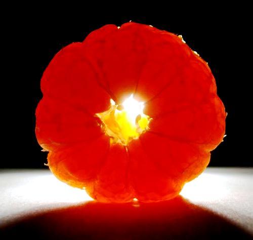 Honey tangerine (8)