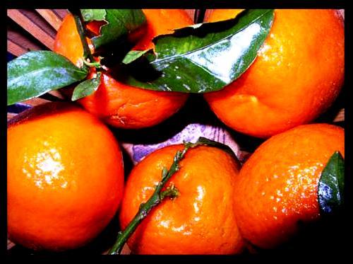 Honey tangerine (10)