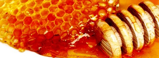 Leatherwood honey (1)