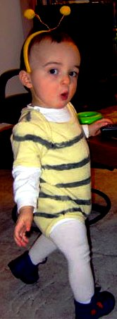 Queen bee costume - bee costume ideas (5)
