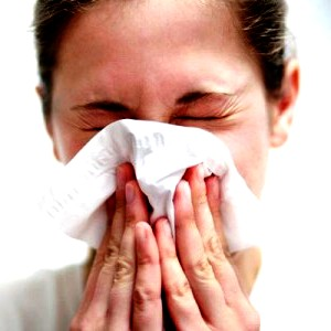 Local honey hayfever - natural remedies for hay fever (2)