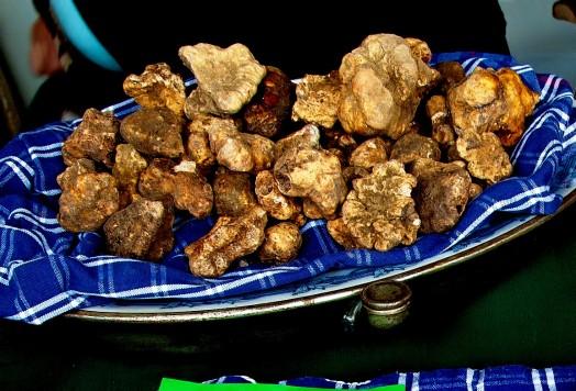 White truffle honey (6)