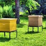 Bee garden (1)