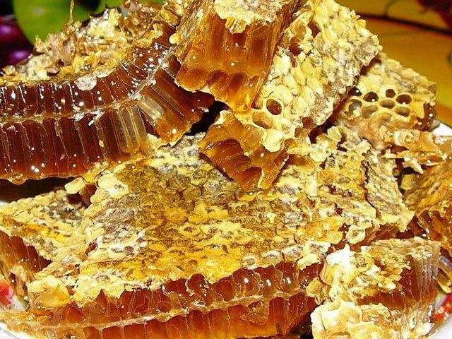 Beekeeping in India4