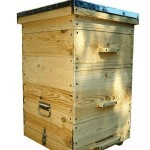 Where to buy bee hives