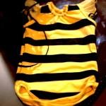DIY bee costume